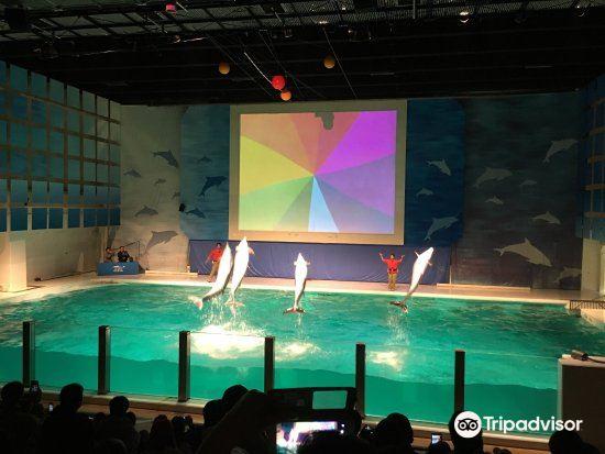 Asamushi Aquarium3
