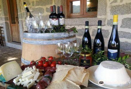 Piero Mancini Vineyards (Balajana Estate)