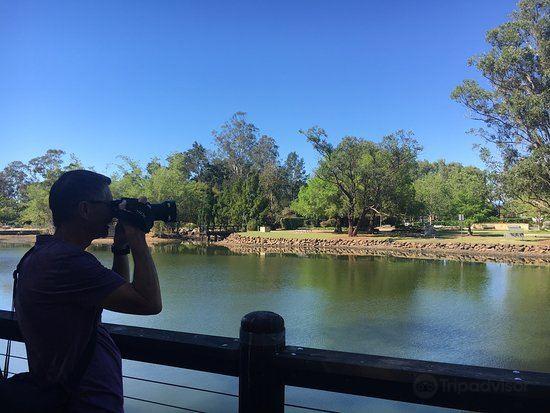 Gold Coast Regional Botanic Gardens4