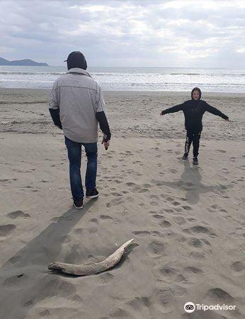 Peka Peka Beach1