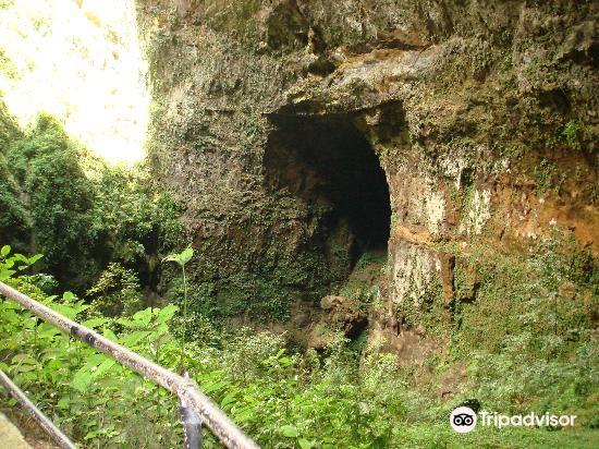 里約熱內盧佳美洞公園 (Parque de las Cavernas del Rio Camuy)4