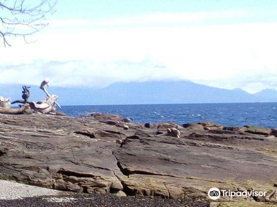 Protection Island3