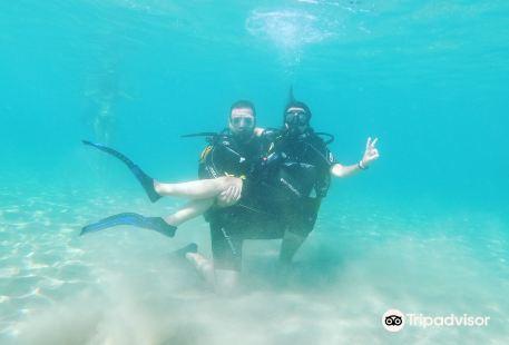 Go Scuba Diving