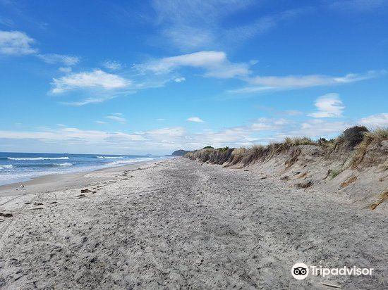 Waihi Beach1