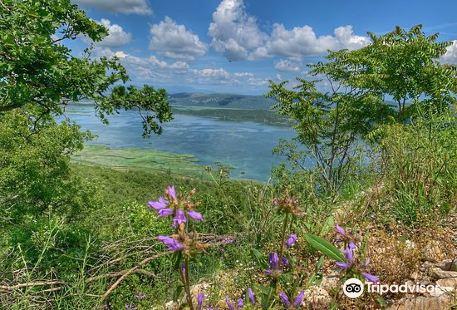 Nature Park Hutovo Blato