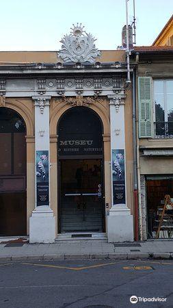 Museum d'Histoire Naturelle4