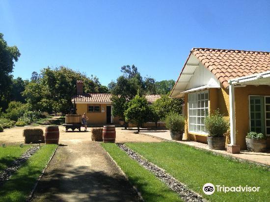 Loma Larga Vineyards & Winery4