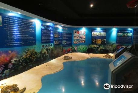 Thailand Sea and Natural History Museum