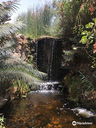 Botanical Garden Of Eilat3
