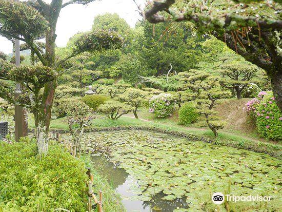 Dogo Park (Ruins of Yuzuki Castle)4