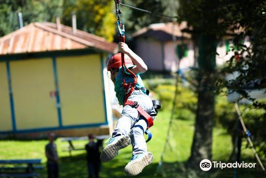 Parco Avventura Rimbalzello Adventure4