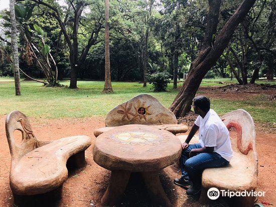 Nairobi Arboretum3
