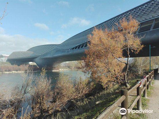 Pabellón Puente4