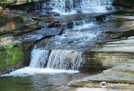 Eagle's Cliff Falls