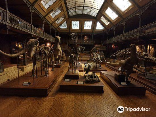 國際微縮電影藝術博物館3