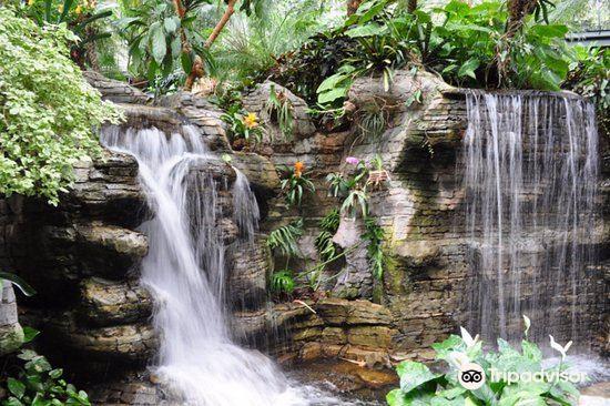 Opryland Hotel Gardens1