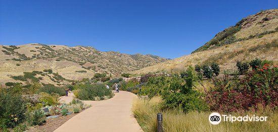 Red Butte Garden2