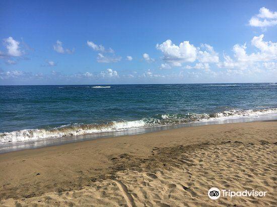 Playa Los Gringos4