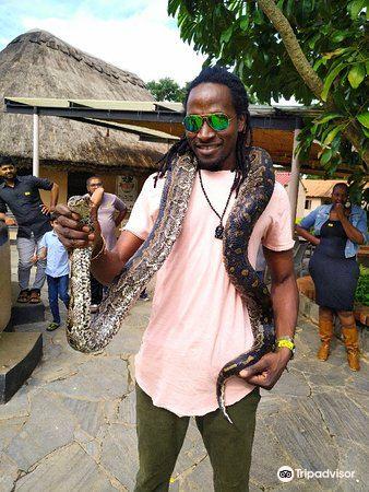Kalimba Reptile Park1