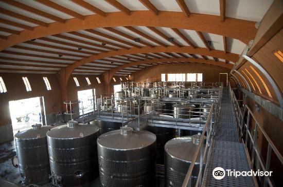 Loma Larga Vineyards & Winery3