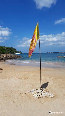叢林海灘1