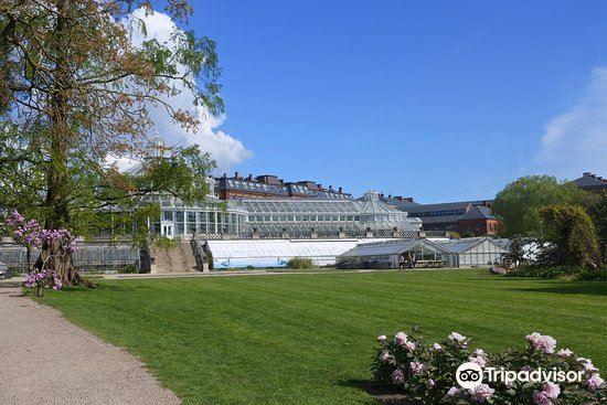 Botanical Gardens (Botanisk Have)1