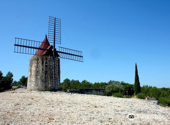 ドーデの風車小屋1
