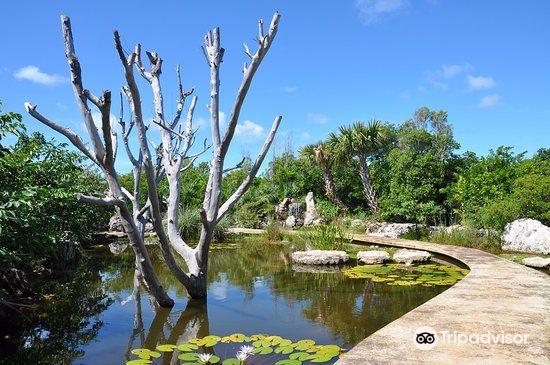Leon Levy Native Plant Preserve