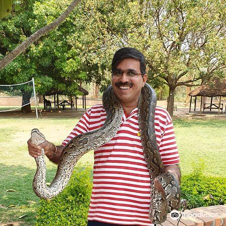 Kalimba Reptile Park2