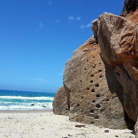 Whiritoa Beach2