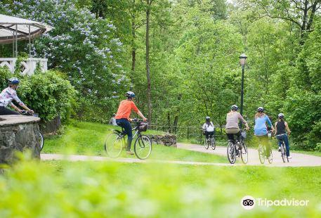 Viking Biking & Viking Hiking