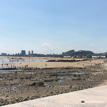 Golden Sandy Beach Bathing Beach4