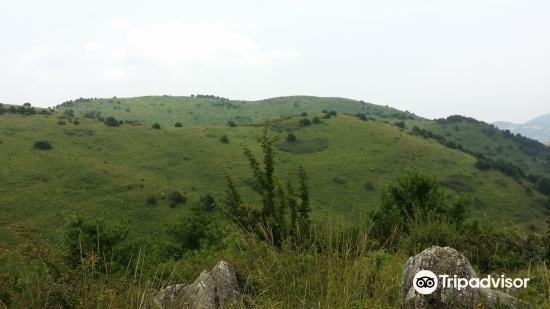 Longnan Xiangshan Mountain Nature Reserve2