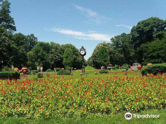 Cismigiu Gardens3