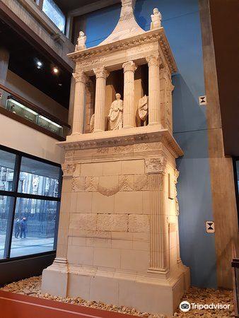 羅馬-日爾曼博物館1