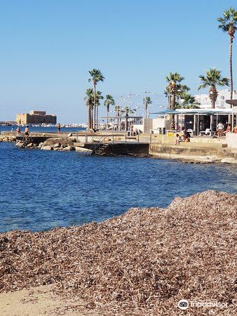 Paphos Municipal Beach3