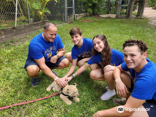 Zoological Wildlife Foundation3