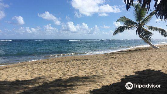 Playa Los Gringos2