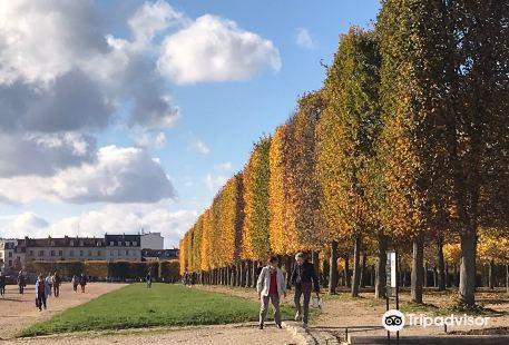 Parc du Chateau de Saint-Germain
