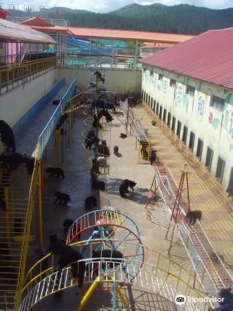 黑寶熊樂園2