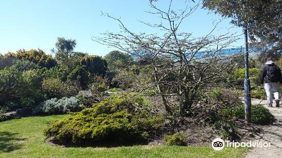 Southsea Rock Gardens2