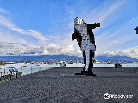 Digital Orca2