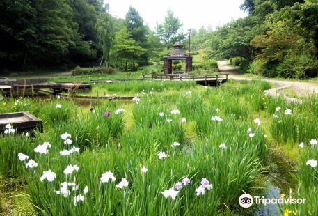 Teragaike Park