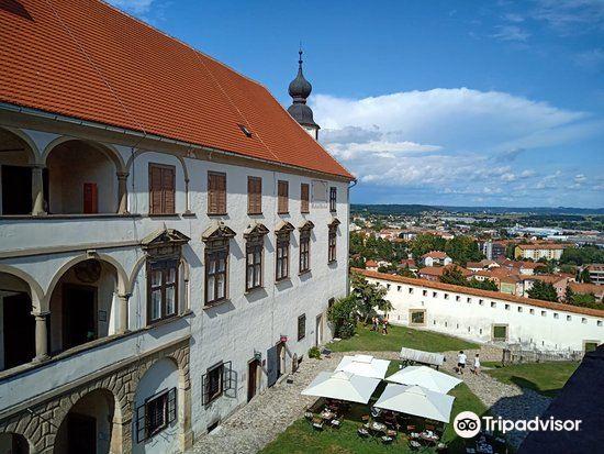 Ptuj Castle (Ptujski Grad)3