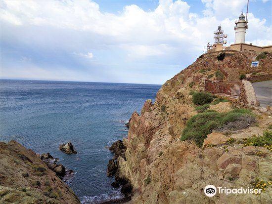 Salinas del Cabo de Gata4
