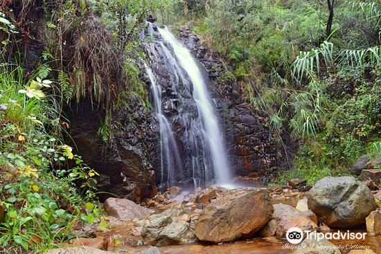 Waterfall Gully2