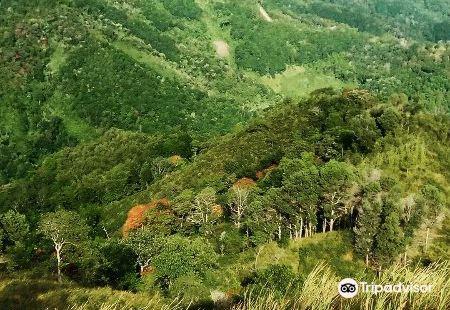 Bukit Bongol