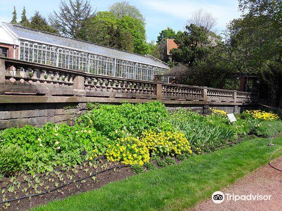 Kaisaniemi Botanic Garden3