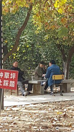 Longhu Park2