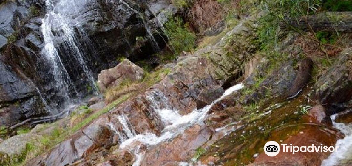 Northern Grampians Shire